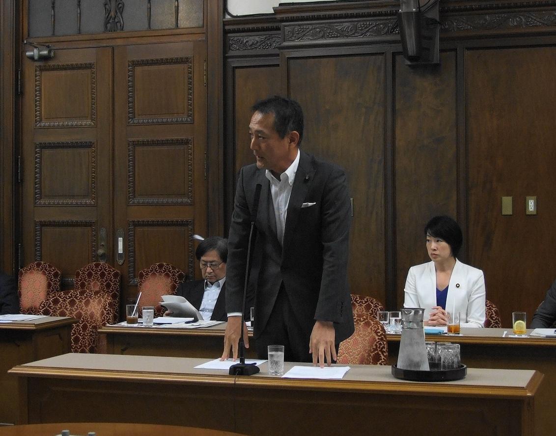 決算委員会 省庁別審査(文部科学省)で質疑